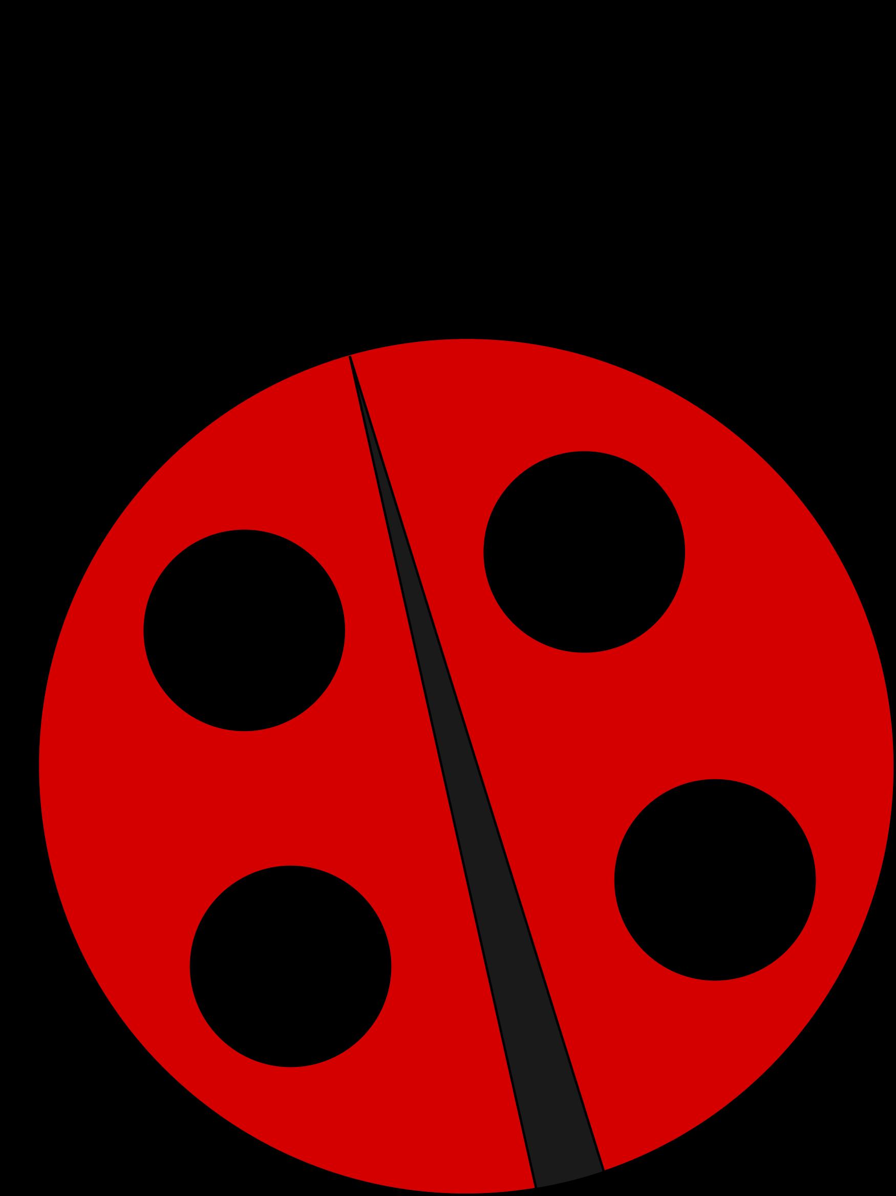 Ladybug Ladybug Cartoon Ladybug Crafts Ladybug