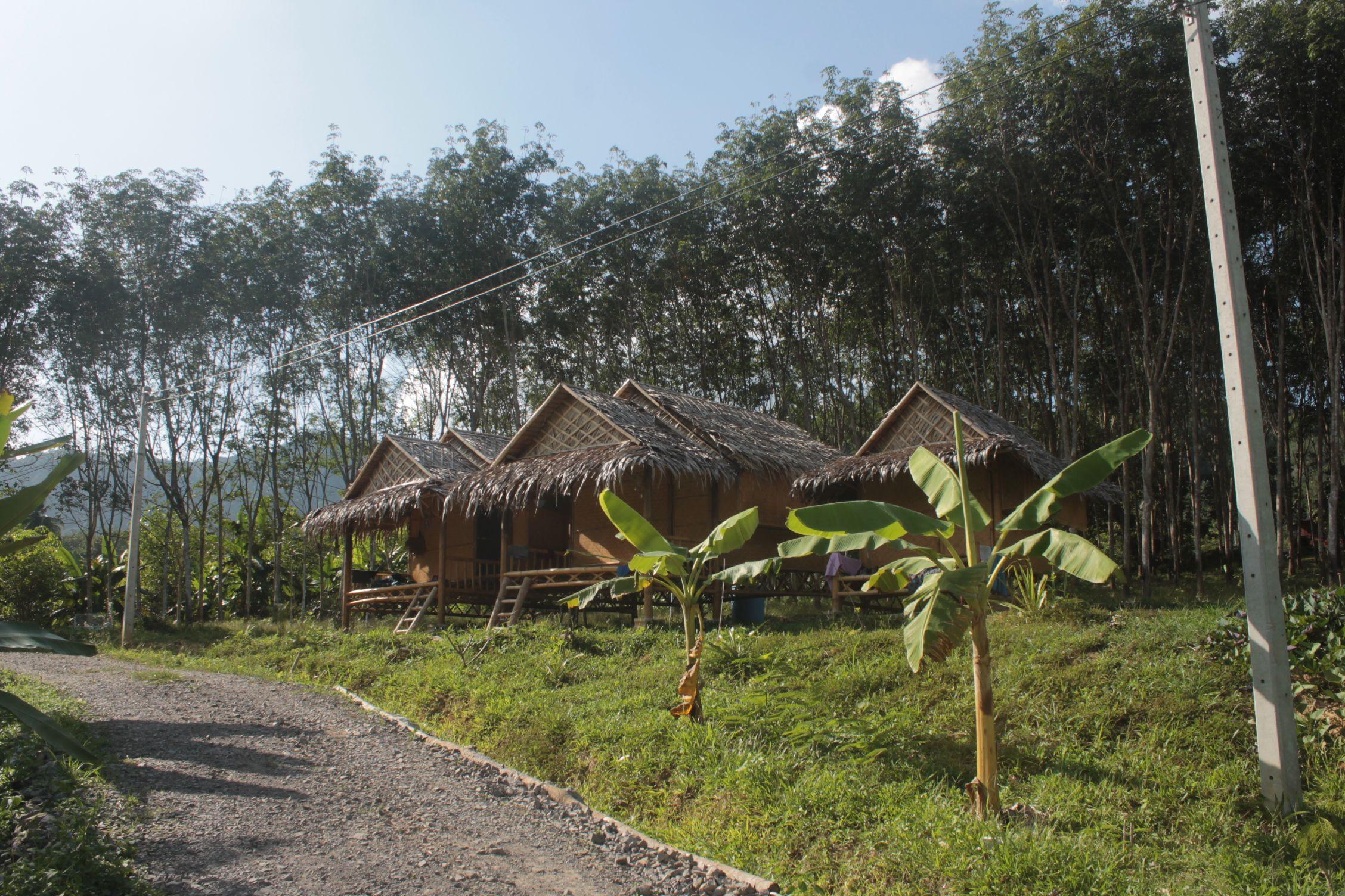 Cabañas de Bambú en Gaarawé