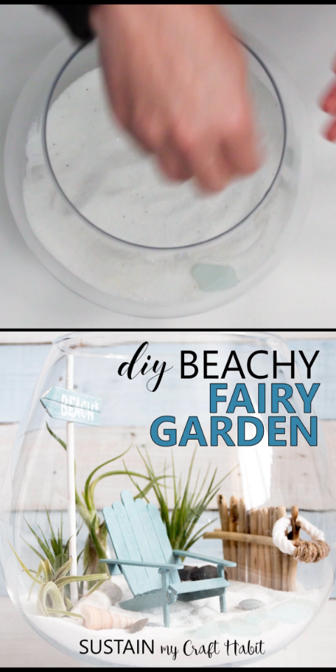 Beach Themed Air Plant Terrarium