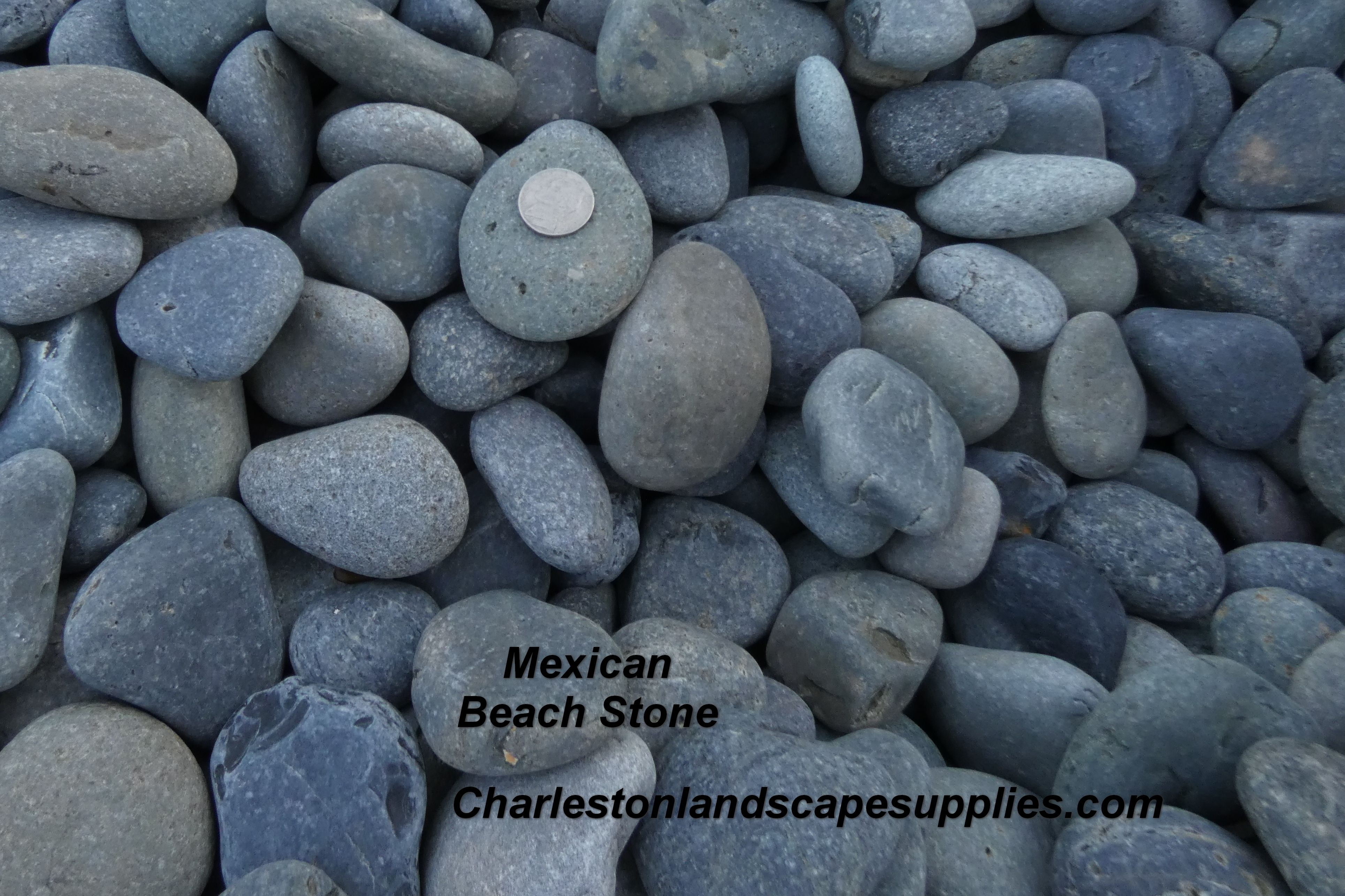 Mexican Beach Pebbles 1 2 Inch Mexican Beaches Mexican Beach Pebbles Pebbles