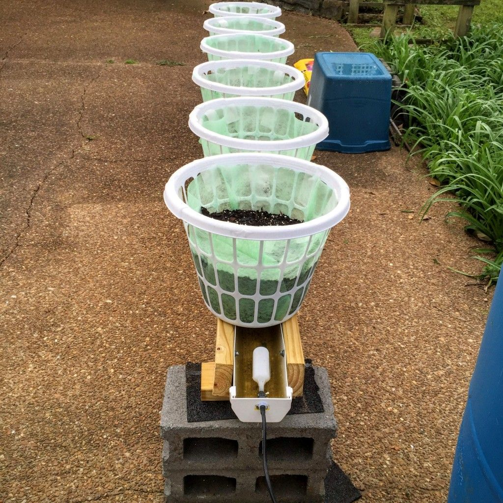 Growing a self-watering garden in laundry baskets! Great for the elderly or people with limited space.