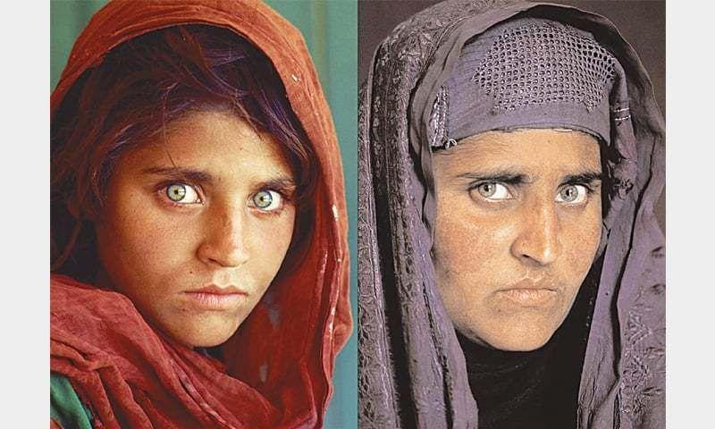 Sharbat Gula In Dilemma Crowdpondent Afghan Girl Steve