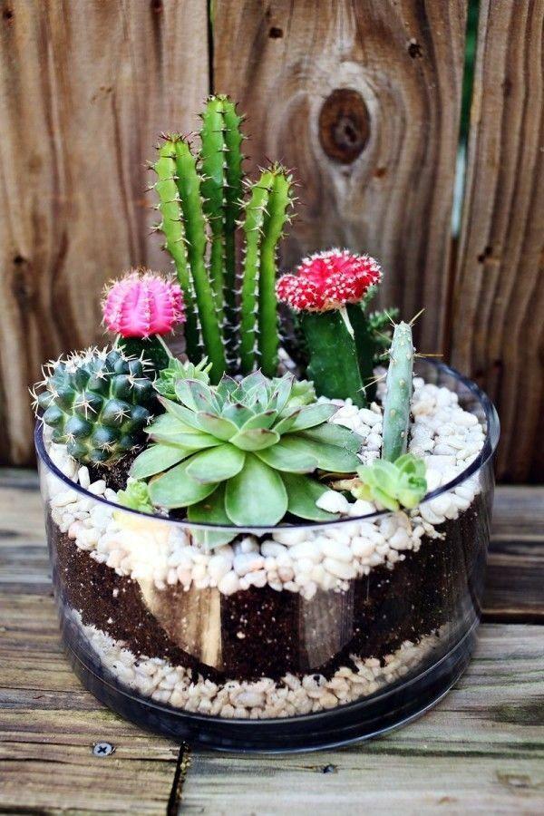 40 Smart Mini Indoor Garden Ideas Ekstrax Succulent Garden Diy Succulents Diy Plants