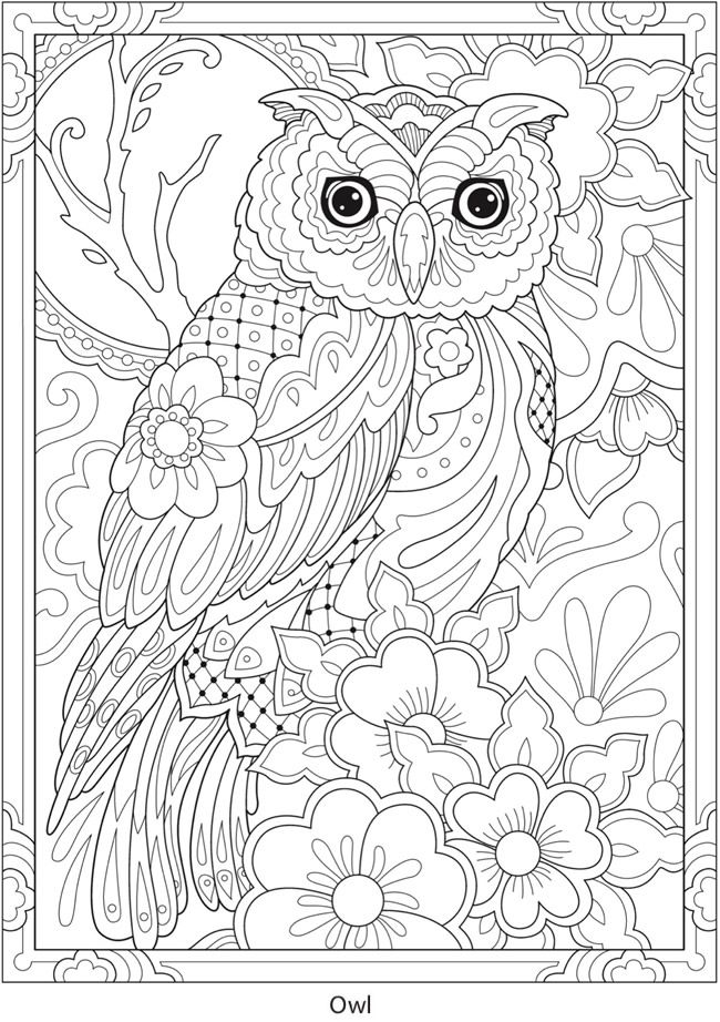 270 Owl Coloring Pages For Adults Ideas In 2021 Owl Coloring Pages, Coloring  Pages, Owl