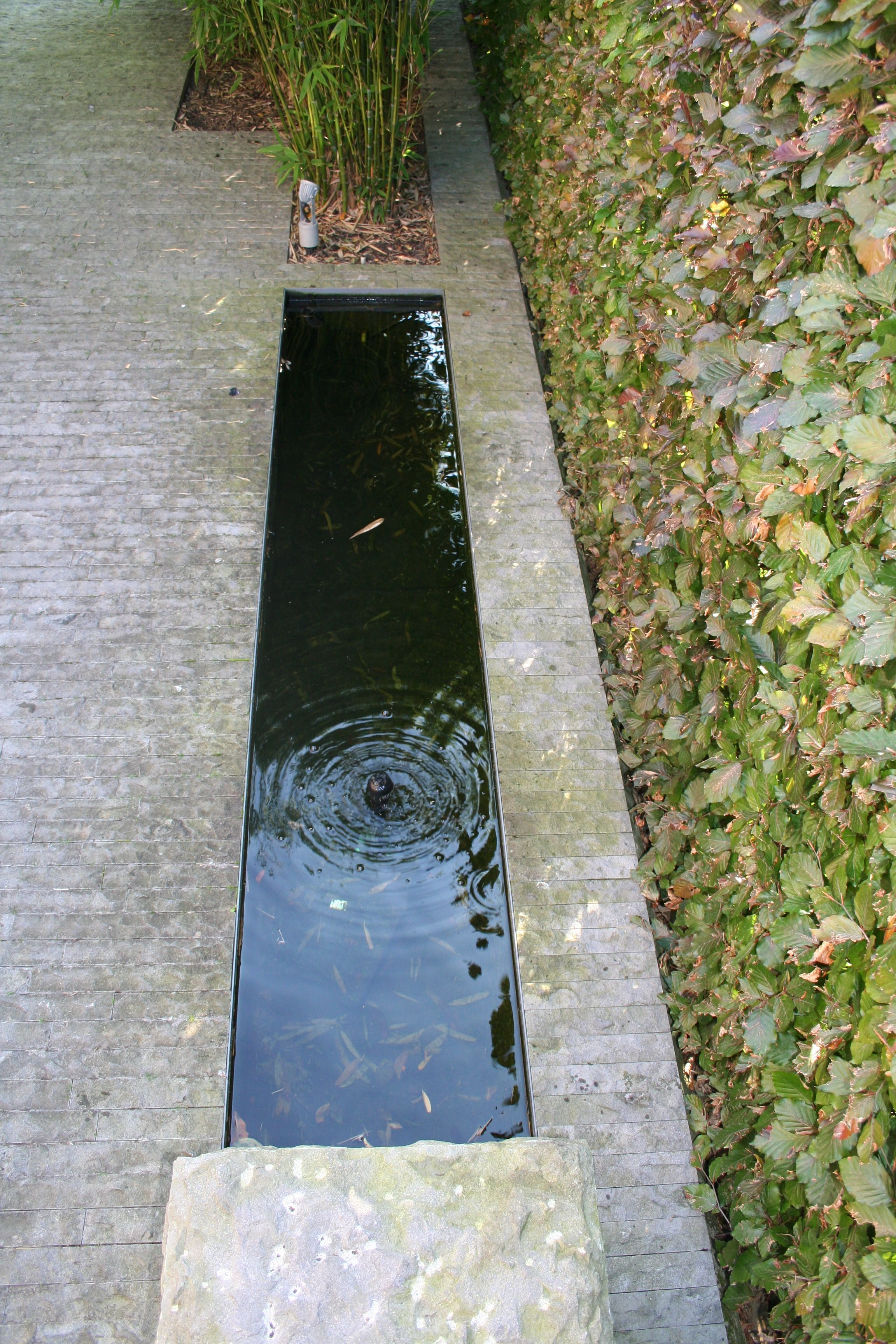 Kleine vijver strakke tuin vijver waterpartij for Vijver voor kleine tuin