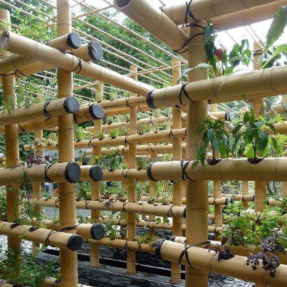 increase you growing power for a small edible garden footprint