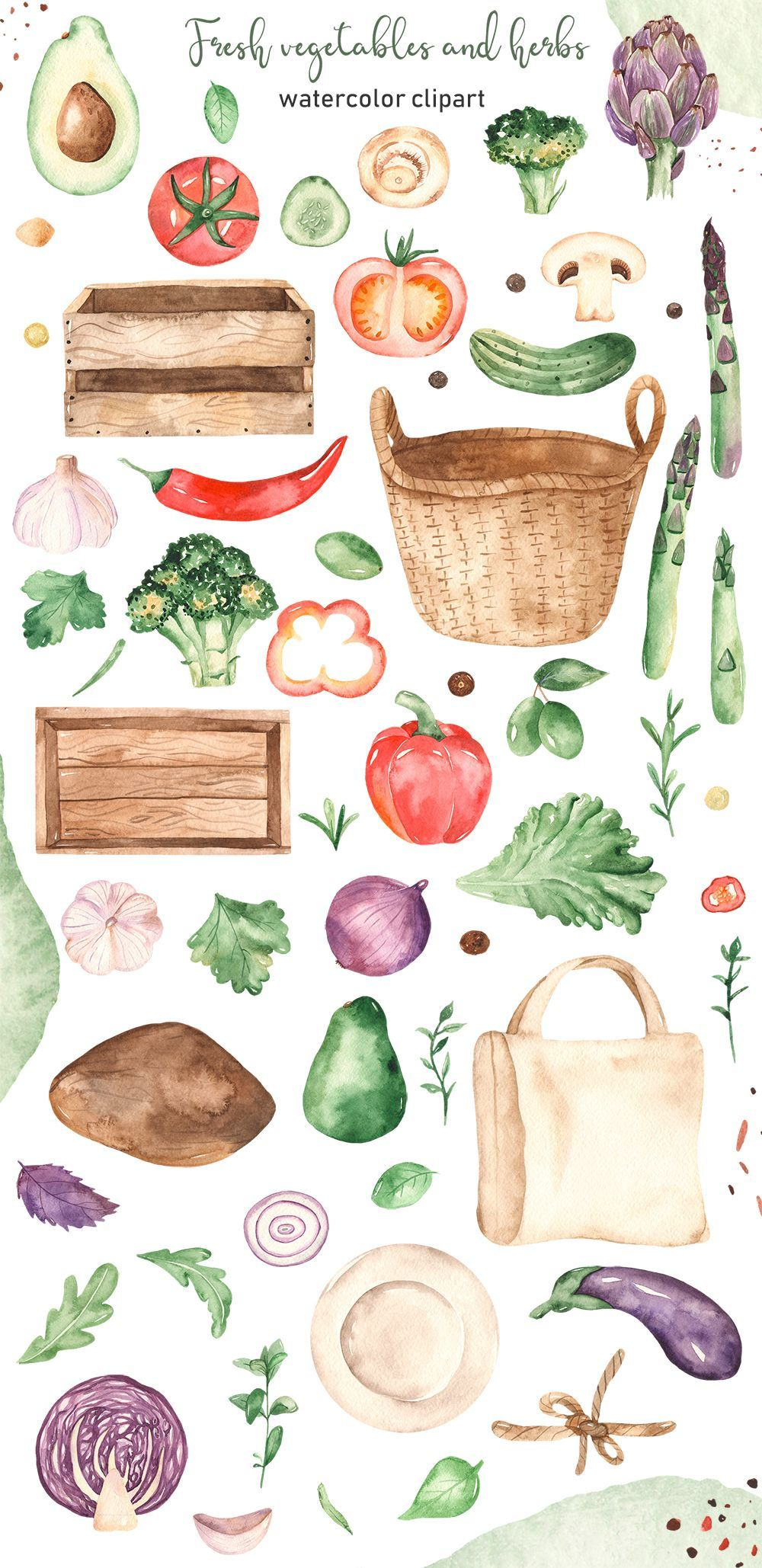 Vegetables and herbs Watercolor Clipart. Tomatoes, peppers ...