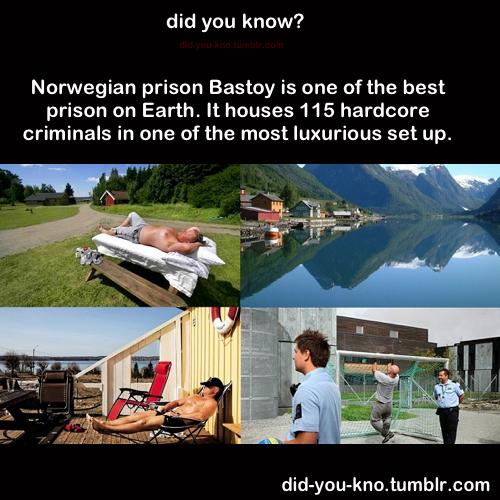 Untitled Island Resort Prison Resort
