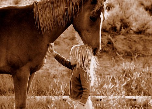 "precious! ""every horse deserves to be loved by a little girl at least once in their lives."""