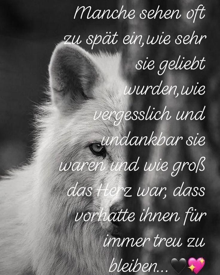 Spruch Wolf