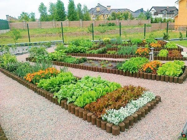 potager garden plans backyard design ideas decorative vegetable
