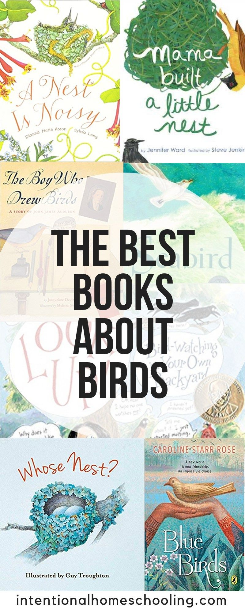 The Best Picture & Chapter About Birds Books #dolistsorbooks
