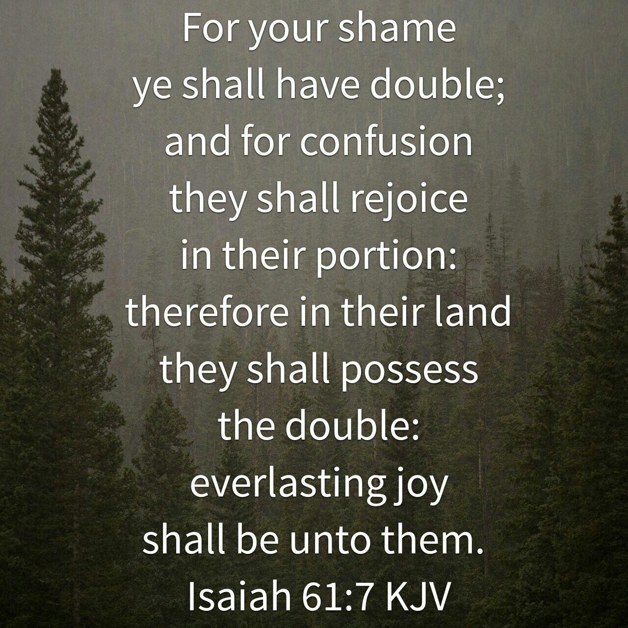 Isaiah 61 : 7 ( KJV ) | Kjv, Faith inspiration