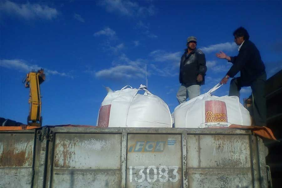 Ferroviaria Andina transportó más de 20 mil toneladas de alimentos en cuarentena