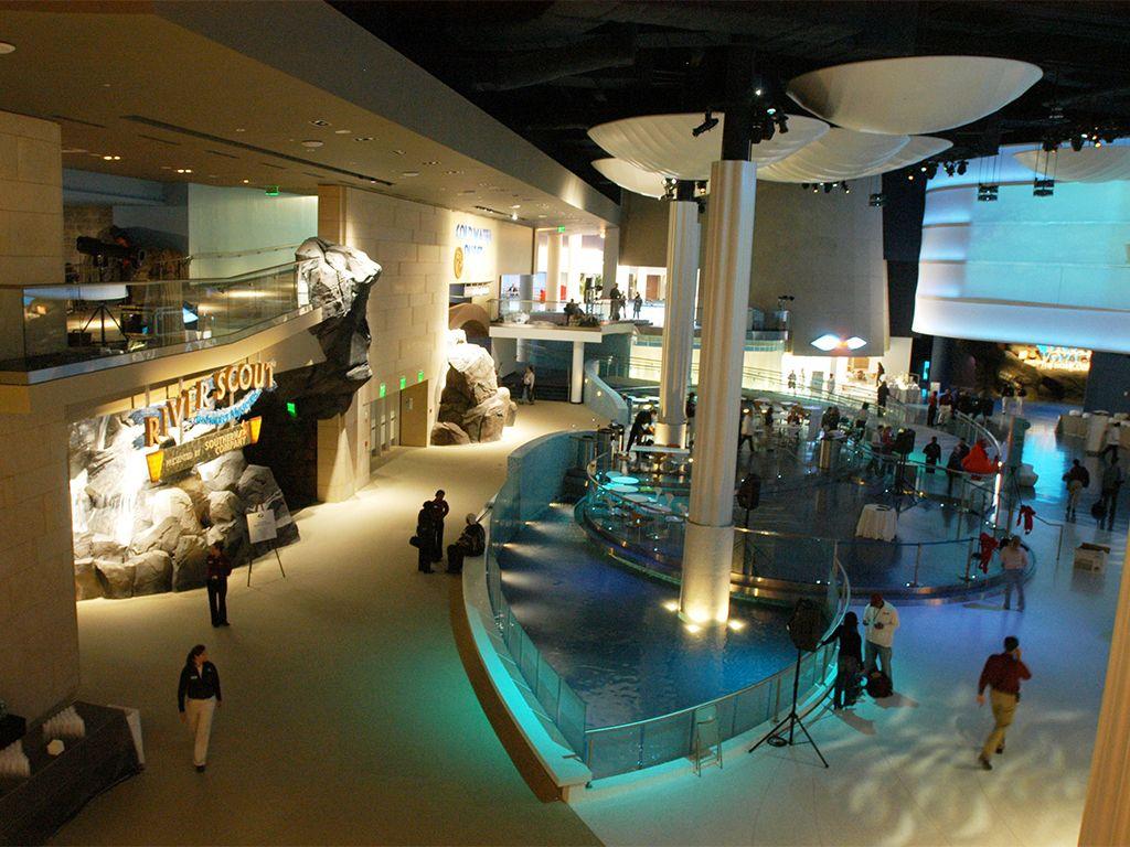 Best Us Aquariums Georgia Aquarium