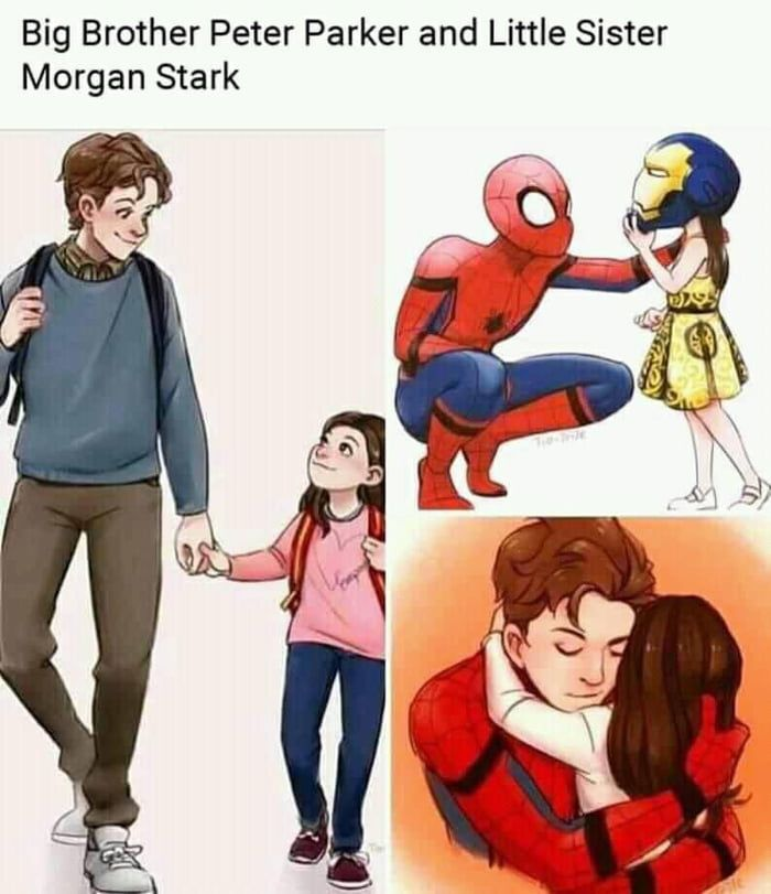 Peter Parker and Morgan Stark after Endgame ..