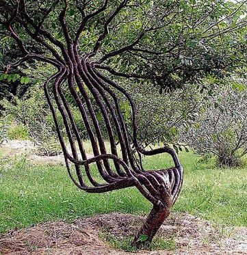 peter cook growing furniture | Outside garden and pretty ...