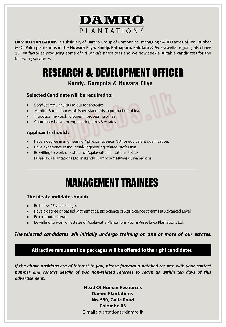 Vacancy Advertisement Ratnapura Advertising Kalutara