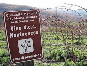 8 Great Northern Italian Wines