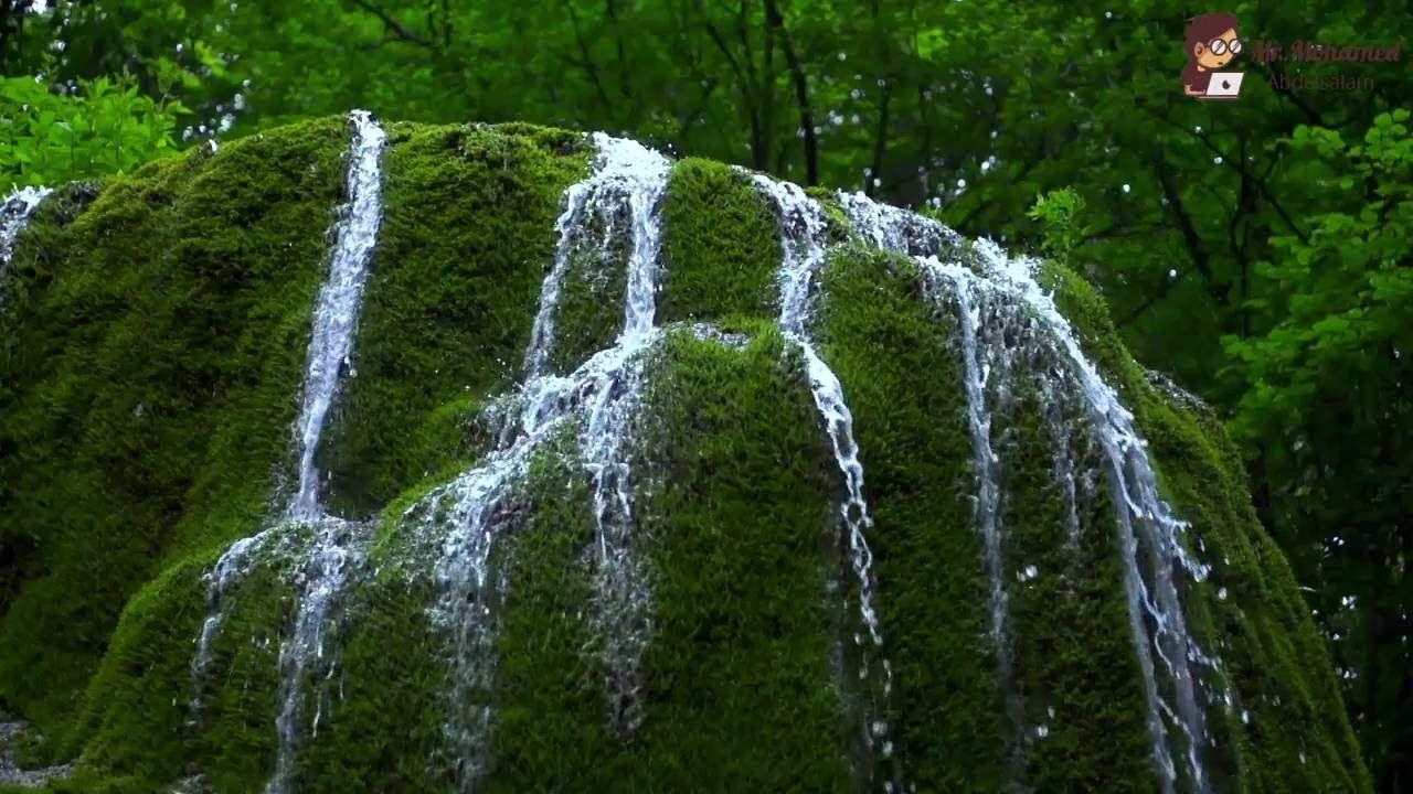 دعاء صلاة التهجد الشيخ شريف تركى ليلة 21 رمضان 1437 2016 مسجد عمر بن الخطاب Waterfall Outdoor Water
