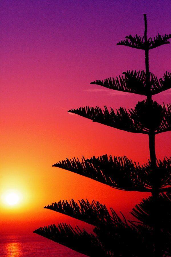 Beautiful Evening Sunset Wallpapers