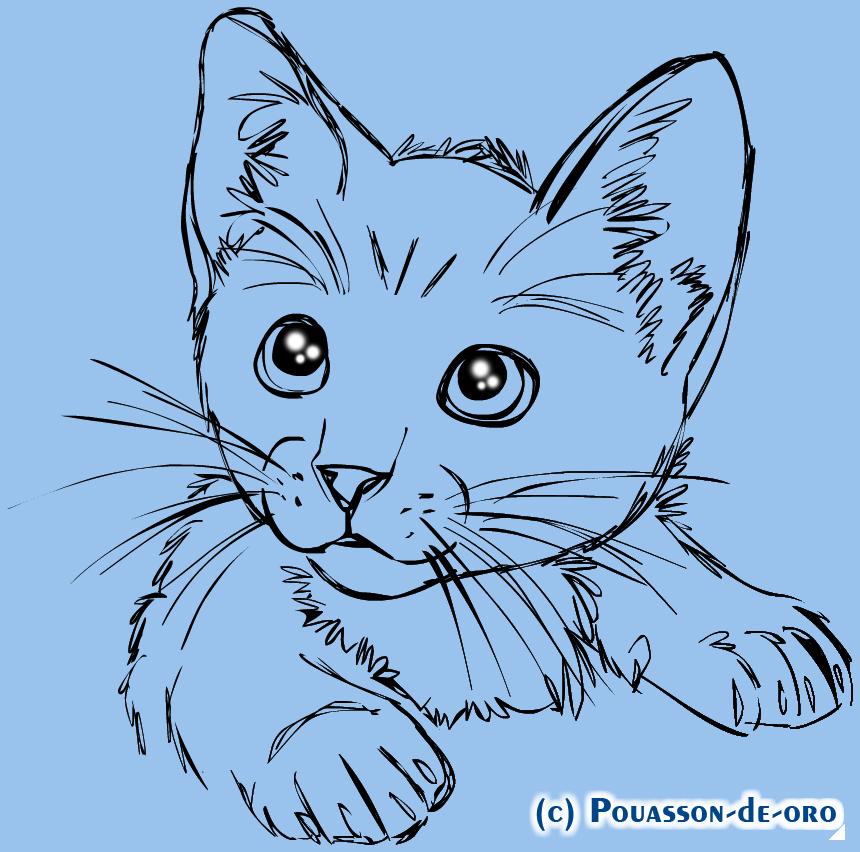 Как нарисовать кошку на открытке, девушке букеты