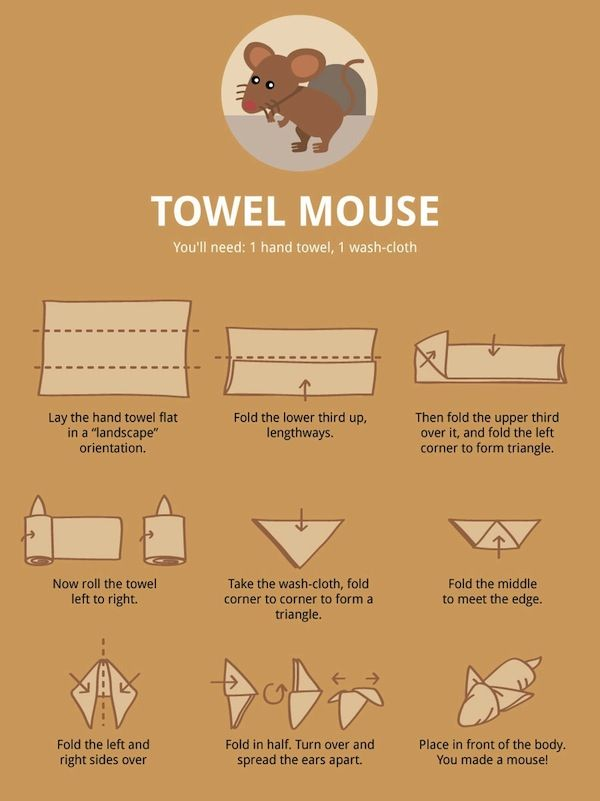 Learn How to fold Towels with Animal Shapes