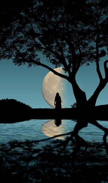⭐Woman, Tree, Silhouette & Moon⭐   My Che-ka   Moon