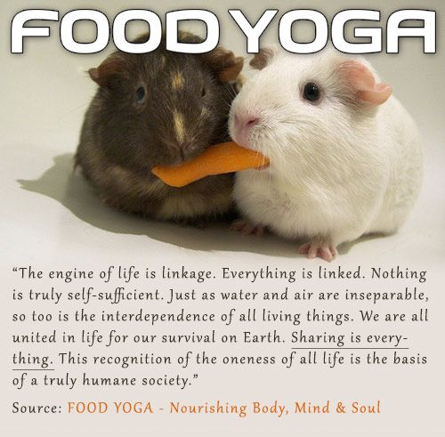 Sharing is the essence of spiritual truth. Get your copy of FOOD YOGA - Nourishing the Soul from www.foodyogi.org . Available in softcover and Kindle.