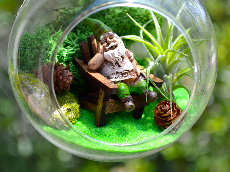 Gnome Garden Terrarium Kit ~ Adirondack Beach Chair ~ Moss and mossy ...