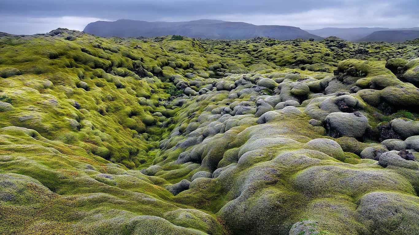 Lava texture bing images - Eldhraun Lava Field In The Laki Fissure System Iceland Hans Strand