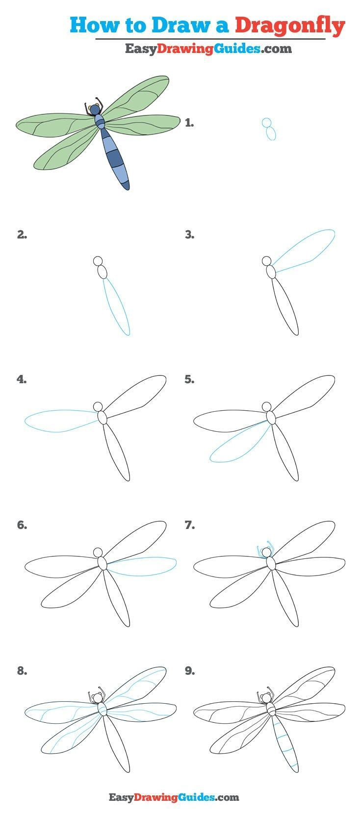 How to Draw a Dragonfly - Really Easy Drawing Tutorial