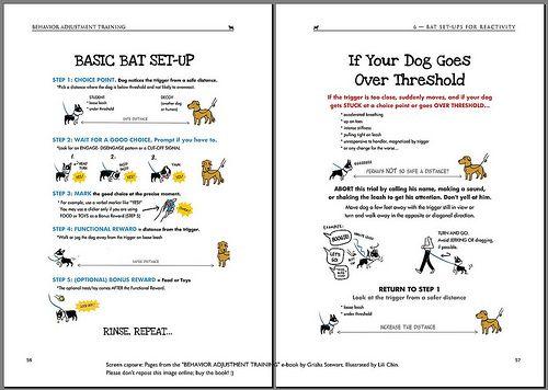 Basic Bat Setup Aggressive Dog Train Your Dog