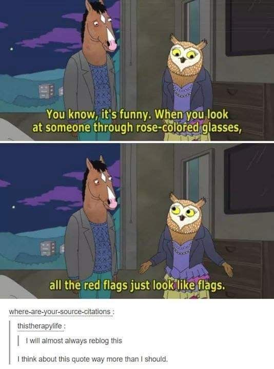 Bojack Horseman Quote When You Look At Someone Through Rose Colored Glasses All The Red Flags Just Look Like Flags Funny Funny Memes Relatable