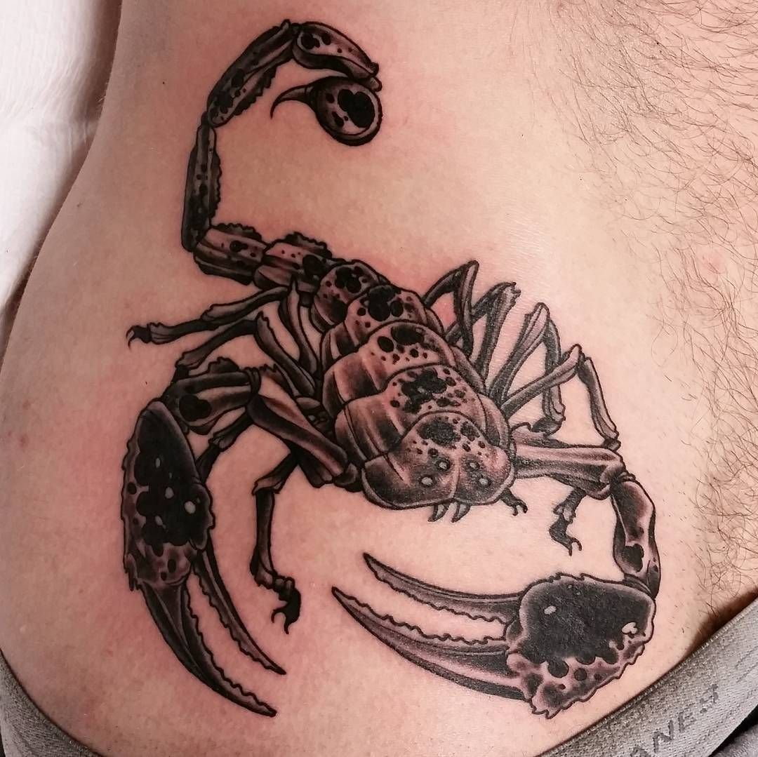 Meaning of Scorpion Tattoo Page 12 of 28 bodyartstyle