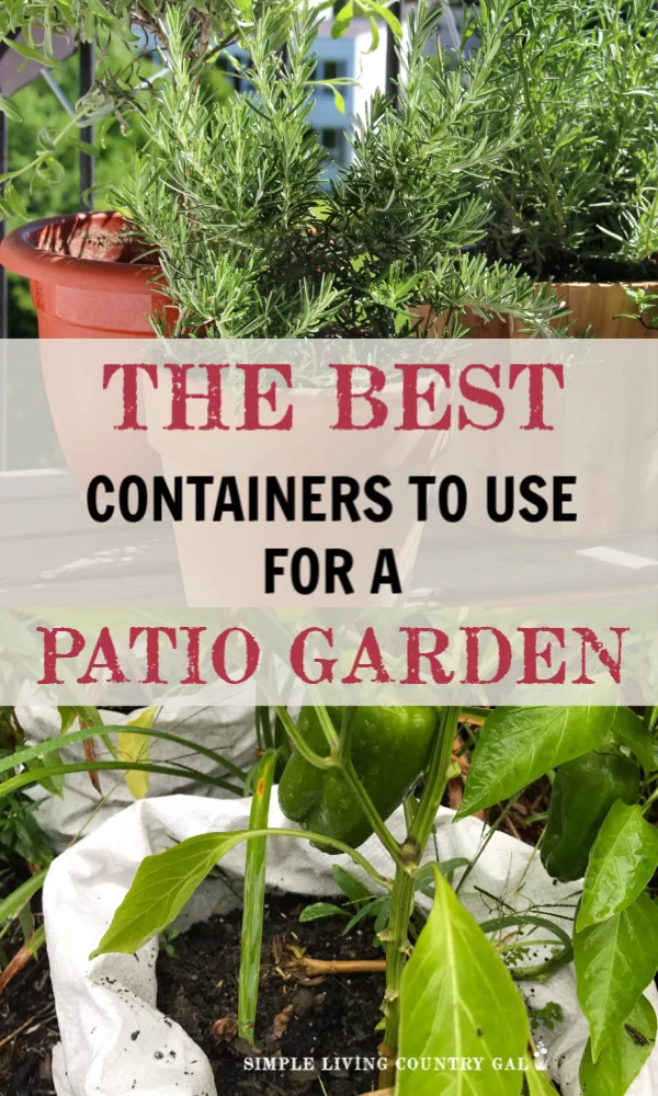 Use any of these containers and have tomatoes outside your door! is part of Patio container gardening, Container gardening vegetables, Container vegetables, Container gardening, Patio garden, Vegetable garden design - Think you can't have a vegetable garden in the city  Think again! This is your list of the best containers and how to grow vegetables in them