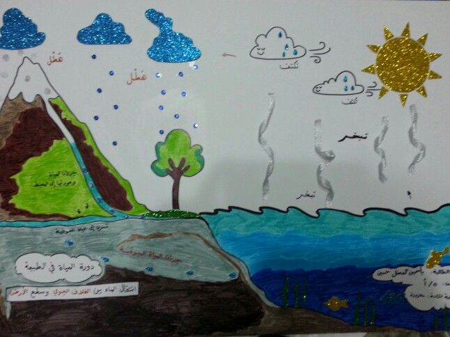 دورة الماء في الطبيعة Projects Memo Flowers