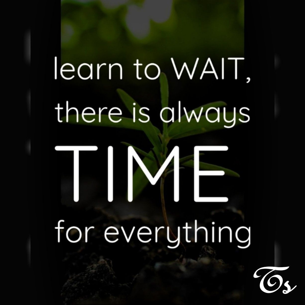 Learn To Wait There Is Always Time For Everything My Quote Me