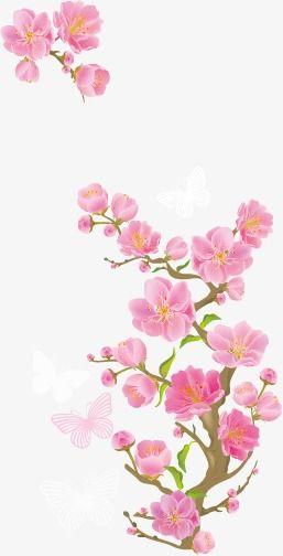 Floral Border Design Pink Floral Vector Blossom Png Transparent