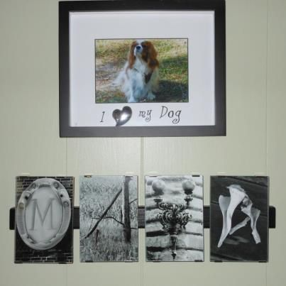 Memorialize a PET?? Customer used images that reminded her of pets personality! Want to Create your own version or word? www.amazingphotoletters.zenfolio.com  Price includes clip frame. $10 per letter +s/h
