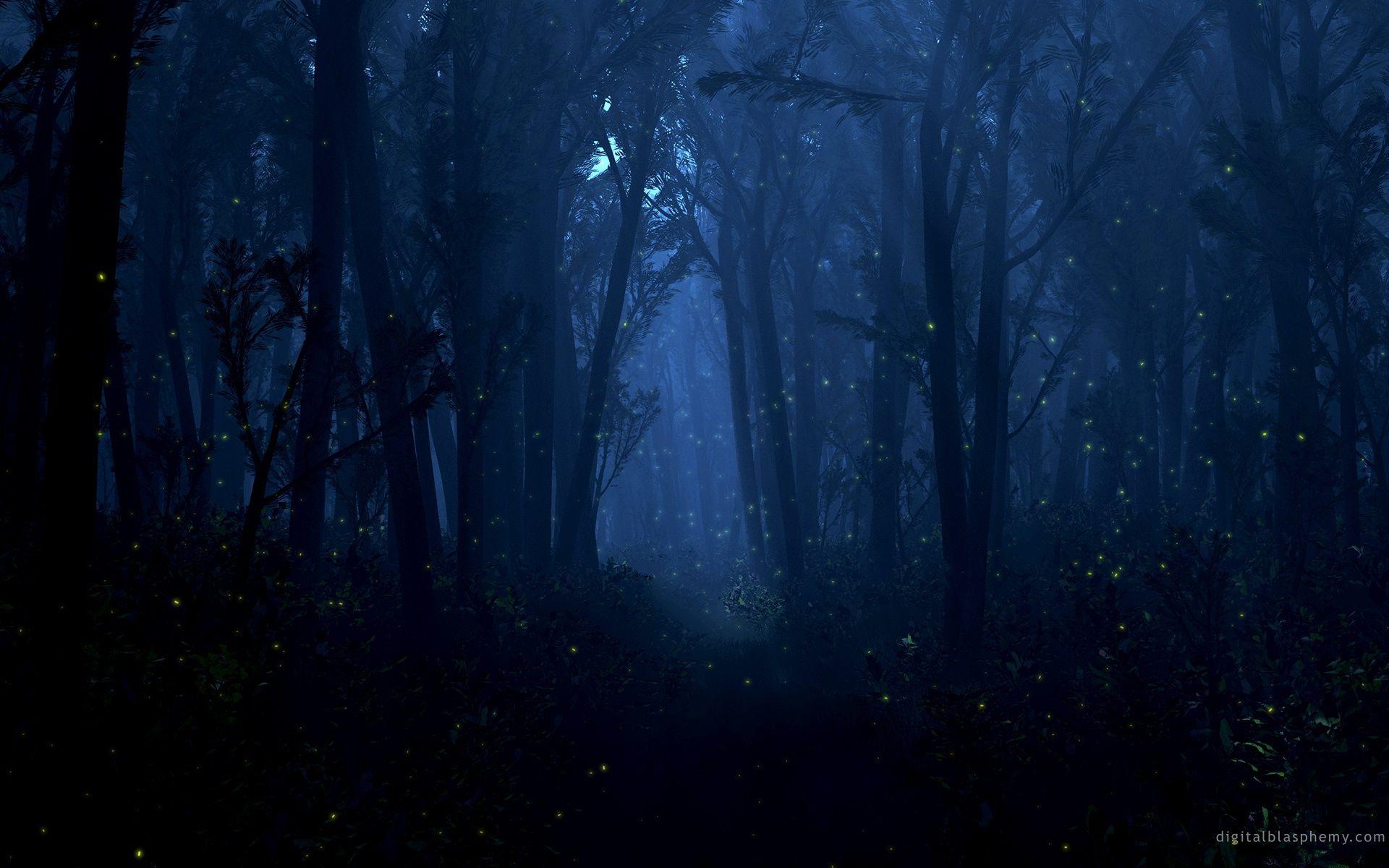 Moonlight Forest Wallpaper Widescreen For Desktop Background HD Resolution 1920x1200 Px 51877 KB
