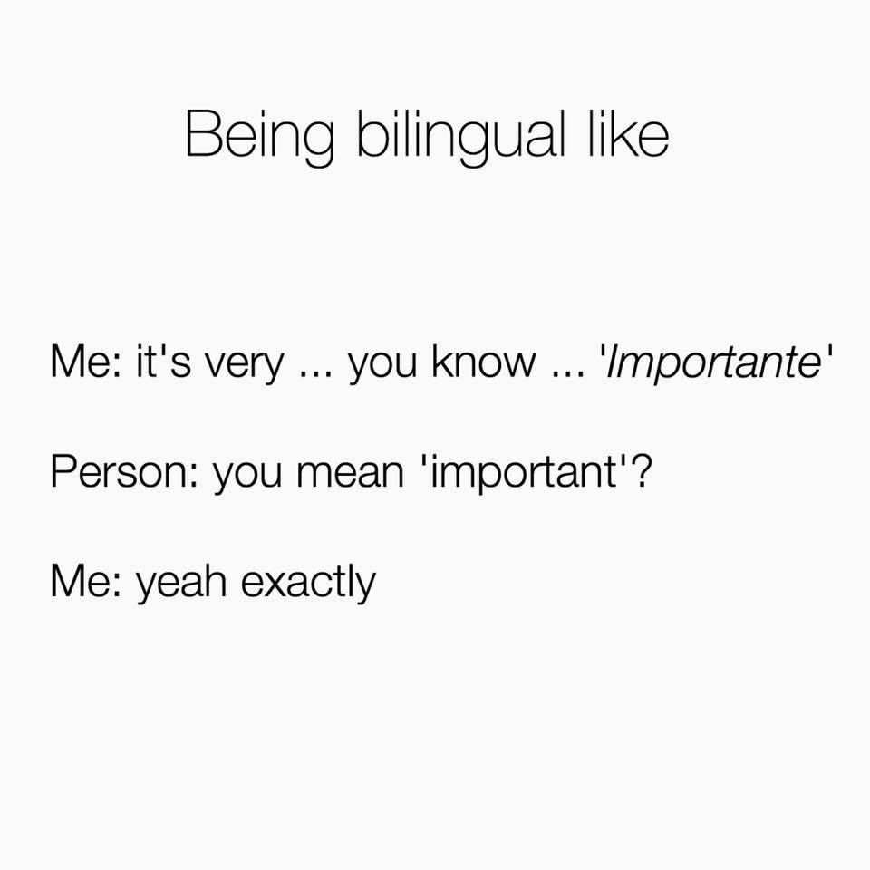 Polyglot Bilingual Languages Bilingual Humor Spanglish Quotes Bilingual Quotes