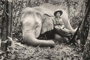 Photo from 1934 George Vanderbilt African Expedition. Image: ANSP Archives 2010-004.