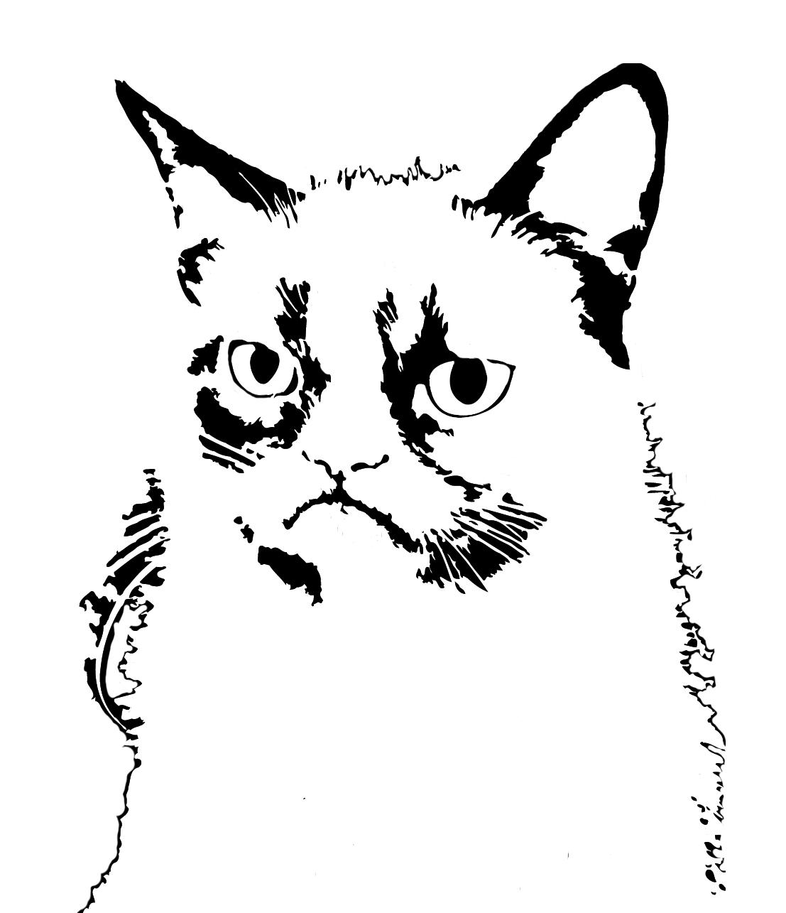 Grumpy cat stencil for graffiti art pumpkin carving for Easy whiteboard drawings