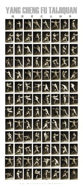 Tai Chi Yang Stil: 85er Langform nach Yang Chengfu