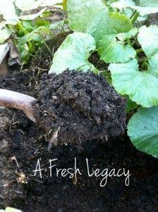 Garden Composting Tips