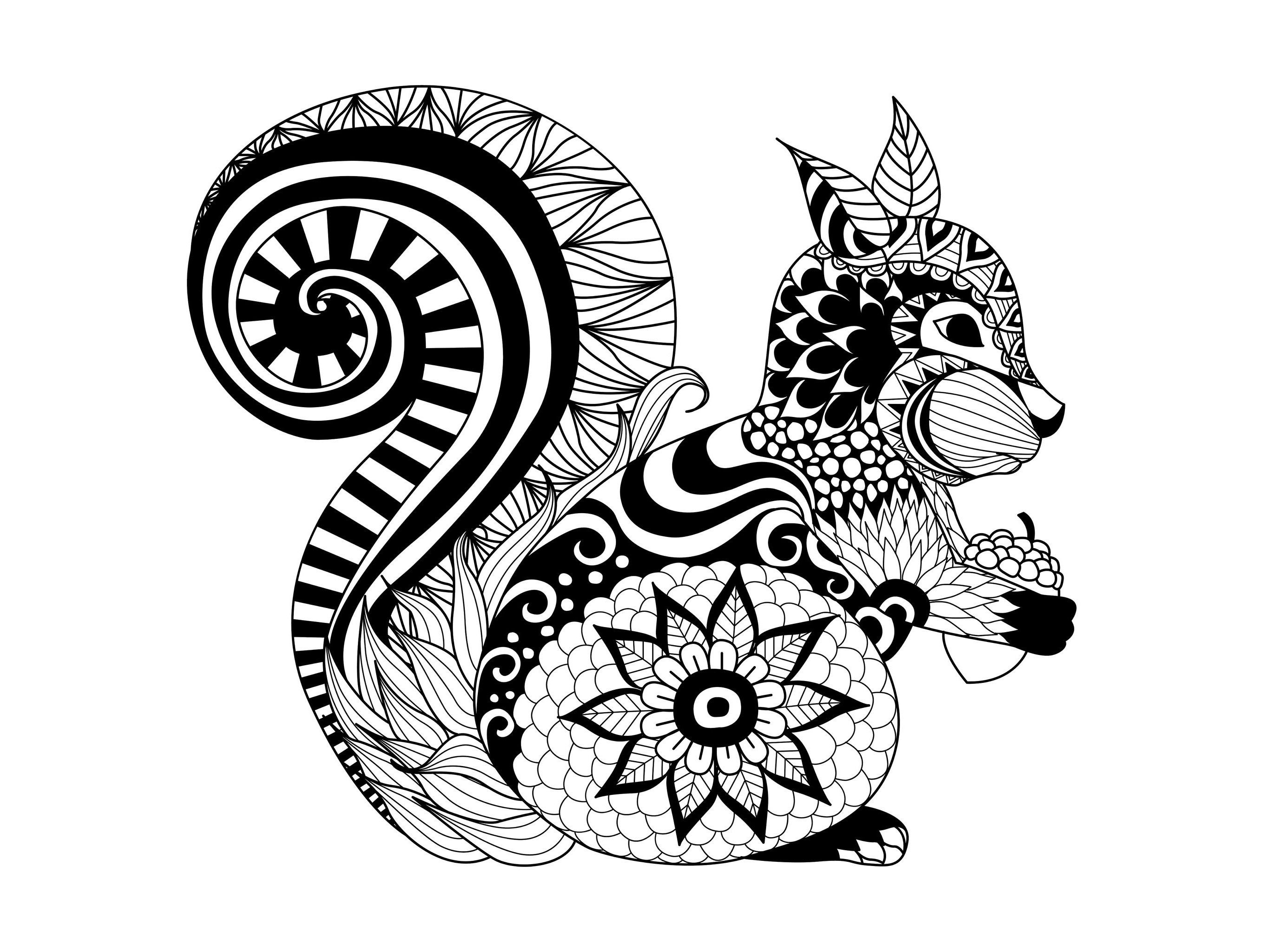 Free coloring page coloringzentanglesquirrelby