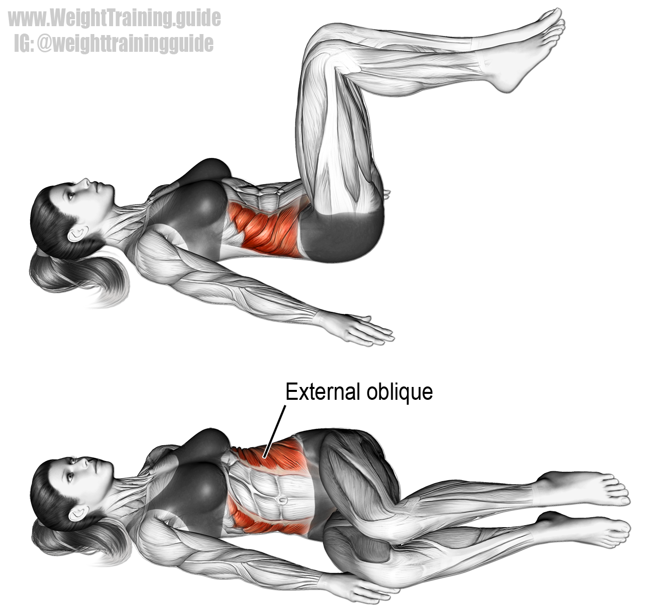 Lying bent-knee oblique twist instructions and video ...