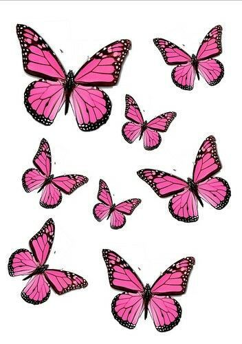 56 x CUTE PINK EDIBLE BUTTERFLIES IDEAL 4 WEDDING BIRTHDAY CAKE TOPPERS WB9 | eBay