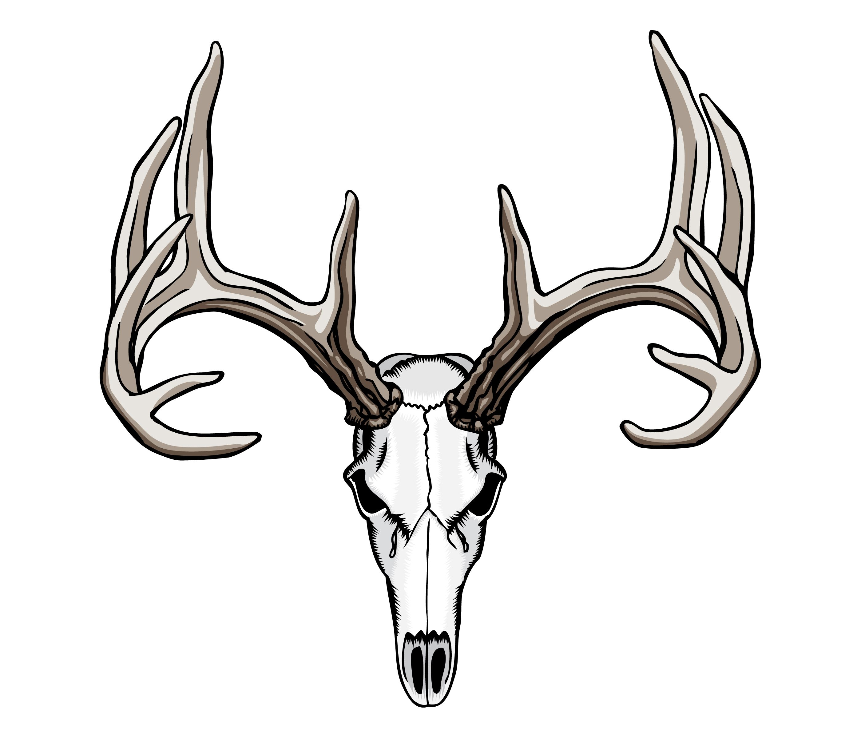 Whitetail Deer Skull Tattoos Deer skull tattoos, Deer